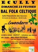 affiche bal 23 fevrier   -   Ecully